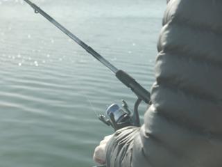 Vegan Fishing